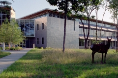 Marketing Services Office Building